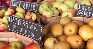 Some of the most obscure varieties of Hudson Valley apples are now in high demand for making blue ribbon hard cider.  On Friday, June 12, Hudson's Cafe Le Perche will be partnering with the Campaign for the New Hudson Area Library to offer a special night featuring exemplary American and French Hard Ciders.  Five hard ciders will be available along with four special entrée pairings.  10% of all sales that evening will benefit the Library.  Advance dinner reservations are required.  Call the restaurant at 518.822.1850.